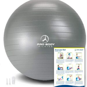 ProBody Pilates Exercise Ball - Professional Grade Anti-Burst Fitness, Balance Ball for Pilates, Yoga, Birthing, Stability Gym Workout Training and Physical Therapy